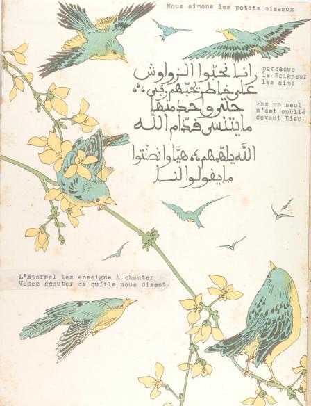 Birdbook#2