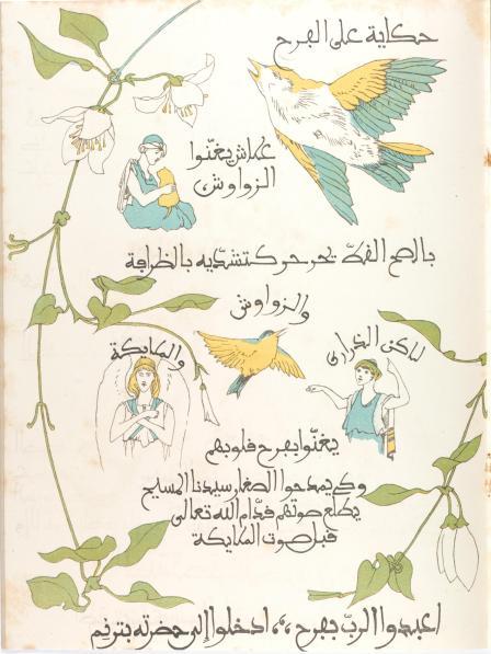 birdbook#7