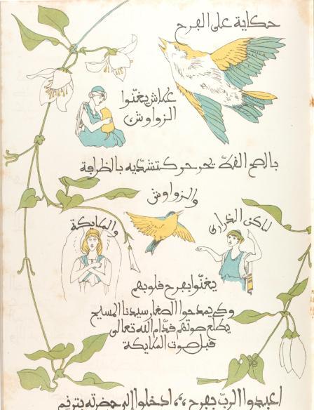 birdbook#8