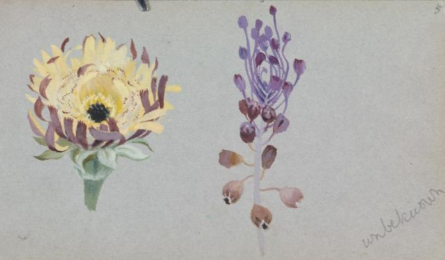 floral 1888