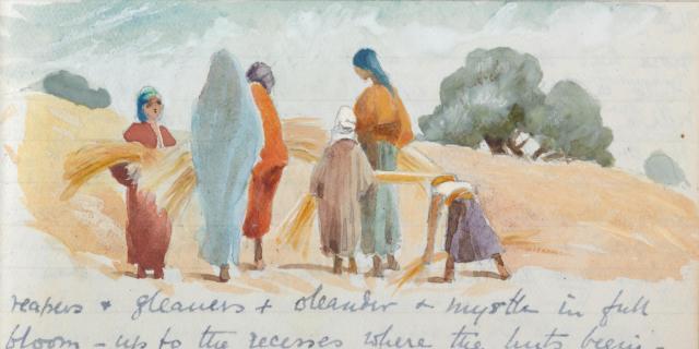 harvesttime